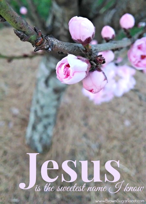 why Jesus is the sweetest name