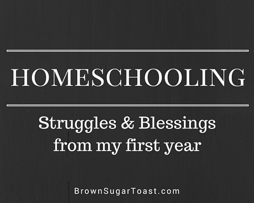 homeschooling: struggles & blessings from my first year